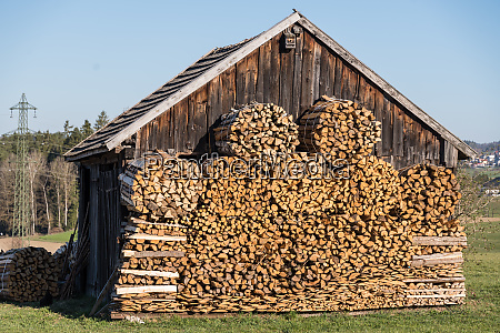 bundled firewood in front of an