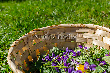 spring flowers in a basket detail