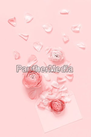 pink flowers and petals blowing
