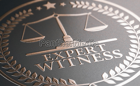 legal expertise expert witness service