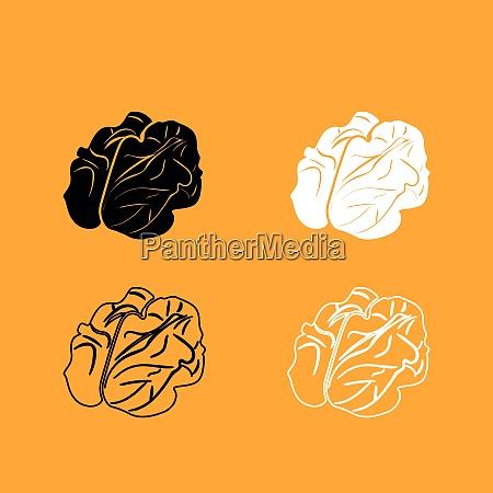 walnut black and white set icon