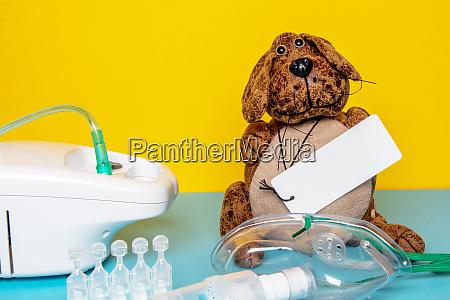 coronavirus funny dog with a empty