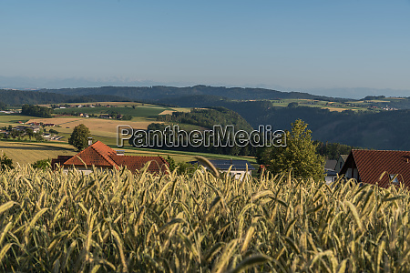 distant view in a hilly landscape