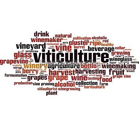 viticulture word cloud