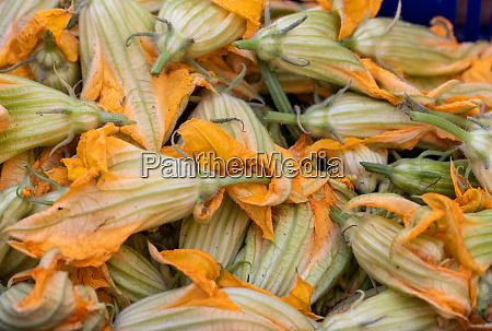 fresh zucchini flowers at a farmers