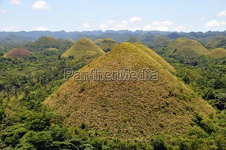 tourist attraction chocolate hills on bohol