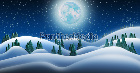 christmas night and the snow fields