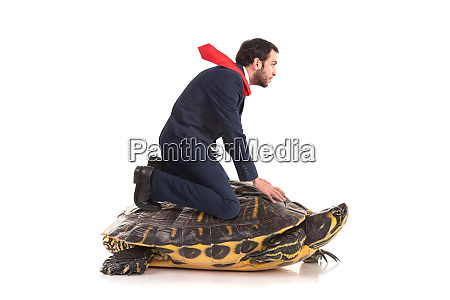 businessman in a turtle