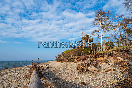 landscape on shore of the baltic