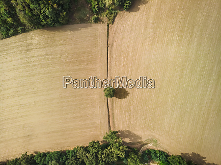 aerial view of a field in