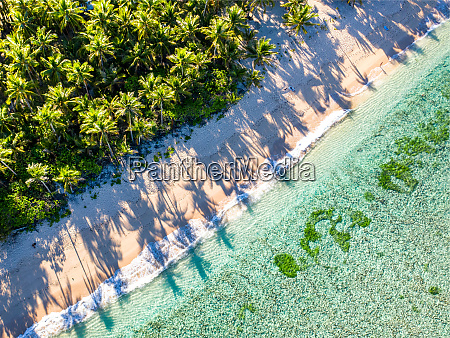 aerial view of pacifico beach siargao