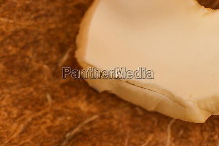 cashew nut texture macro closeup natural