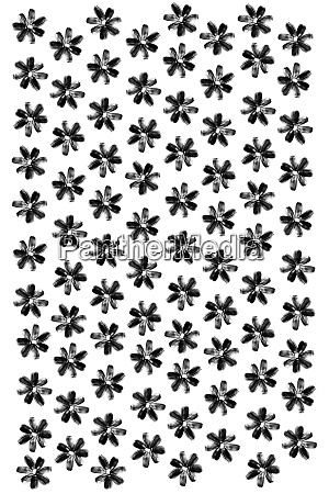 sunflower seeds flowers pattern isolated background