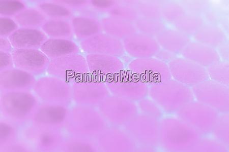light pink foam plastic texture abstract