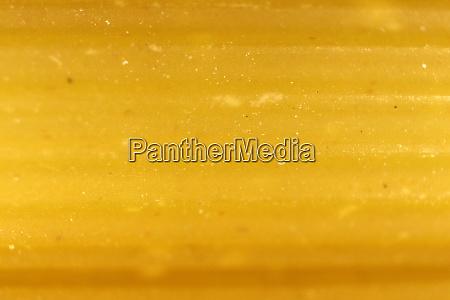 pasta texture uncooked macaroni food background