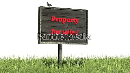 sign in grass with lettering property