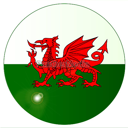 national flag of wales button