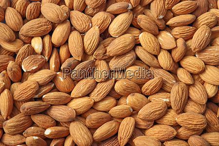 peeled almond nuts