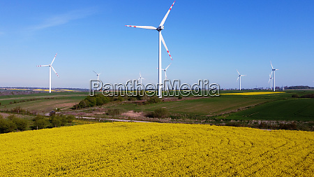 wind turbines farm surrounded by yellow