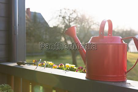 gardeners hands planting flowers in pot