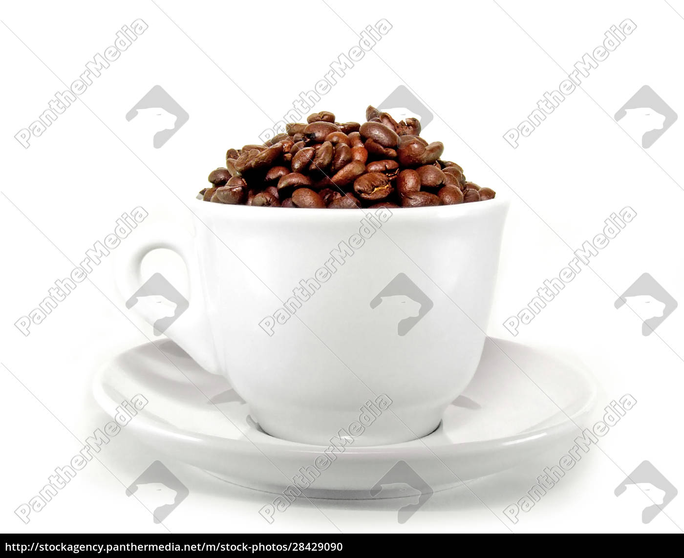 white, cup - 28429090