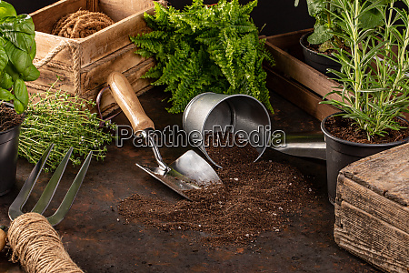 gardening tools and utensils