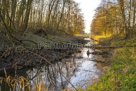 sunset at a stream in the