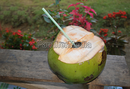 coconut with drinkung straw in the