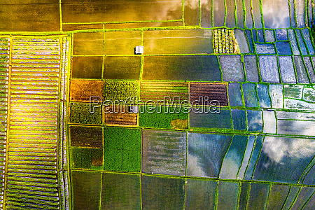 aerial view of the traditional agriculture