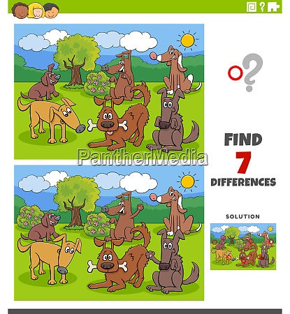 differences educational task with dogs and