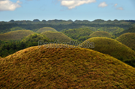 the chocolate hills on bohol in