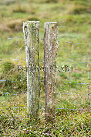 wood fence post in countryside on