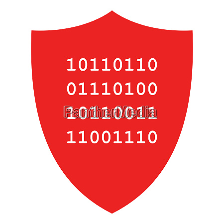 binary code and shield