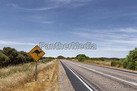 outback australian famous iconic kangaroo motorway