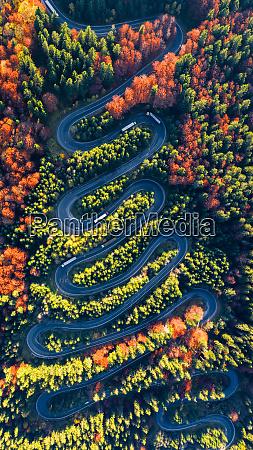 winding road in carpathian mountains romania