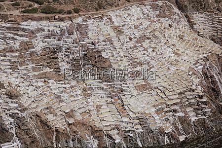 salt ponds of maras peru south