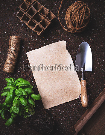 flat lay of gardening concept