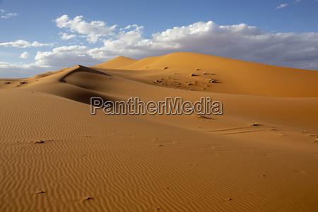 deserts and sand dunes landscape at