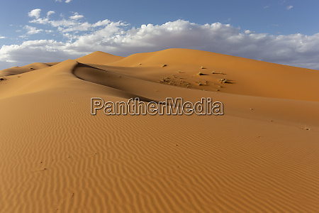 sahara deserts and sand dunes landscape