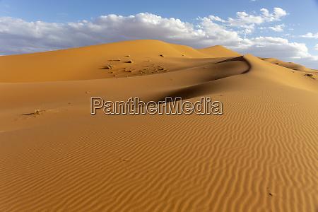 untouched deserts and sand dunes landscape