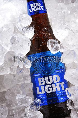 bottle of bud light beer in