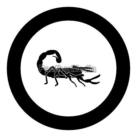 scorpion icon black color in circle