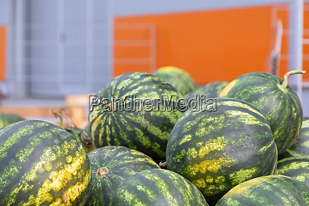watermelons produce