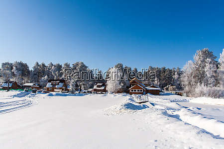 snowy field with traces trees at