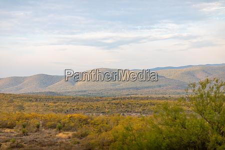 tamaulipas landscapes