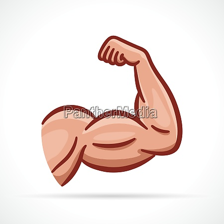 vector muscle arm clipart design
