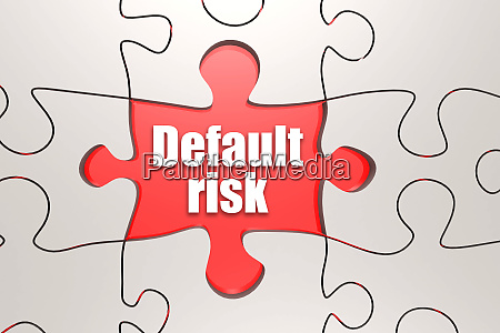 default risk word on jigsaw puzzle