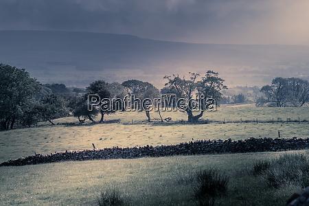 northwest english countryside between the rain