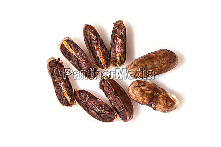 fresh cocoa cacao beans