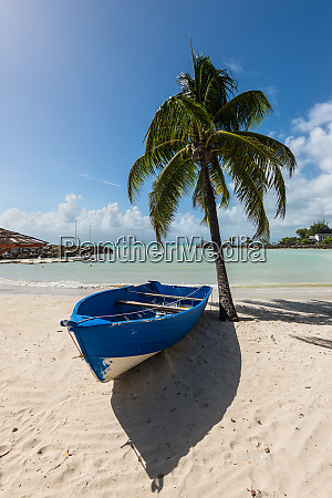 wooden boat on the beach under